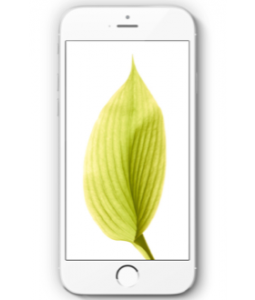 Ремонт iPhone 6s в Калуге